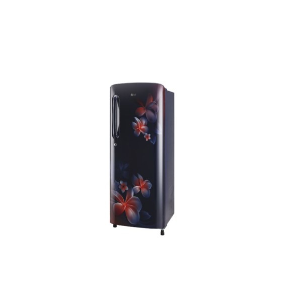 LG Inverter Direct-Cool Single Door Refrigerator 190 Litres 4 Star (GL-B201ABPY , Blue Plumeria )